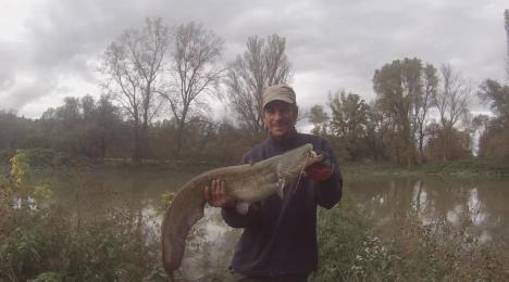 lol69-glane