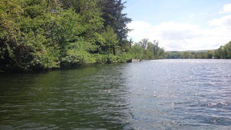 DSC_0005_11