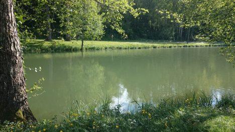 DSC_0051_2