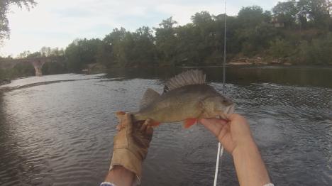 perche-38-douelle-3