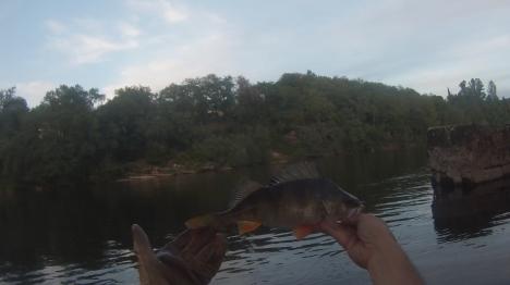 perche-38-douelle