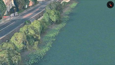 img_1350